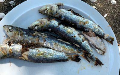Sardines grillées sans odeurs ni fumée